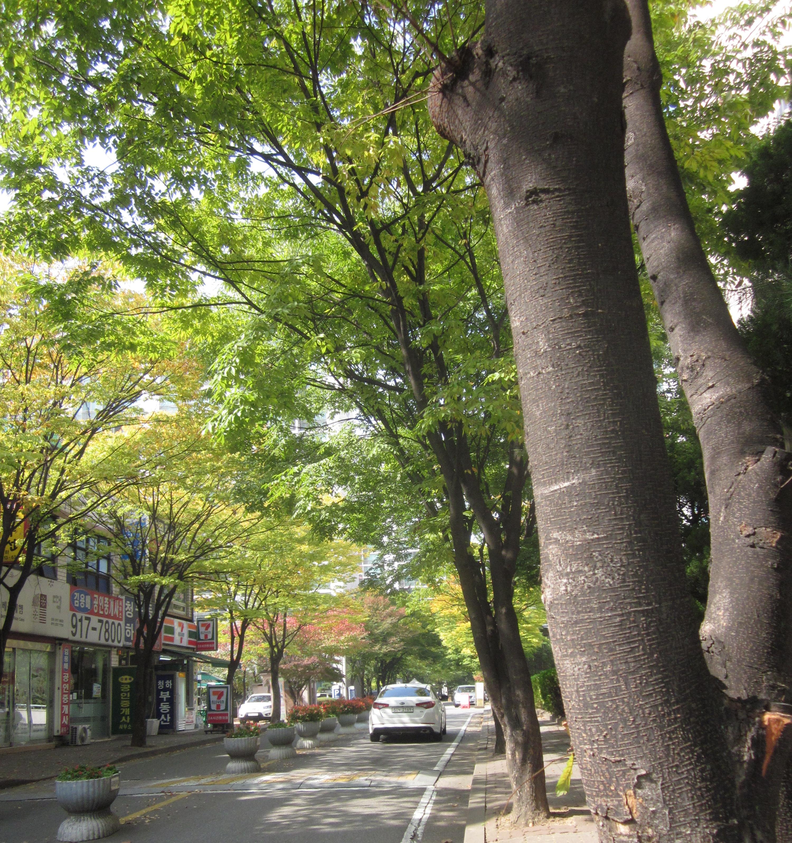 20121013_hugokgoyanggyeonggi
